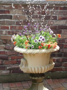 Landscape Plant Container Enhancements